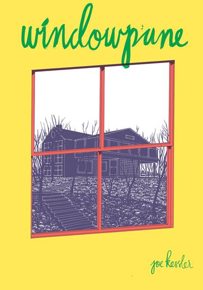 Cover image of Windowpane #2, color