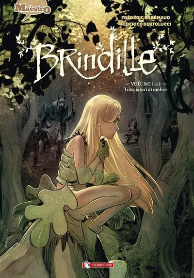 Cover image of Brindille #01, color